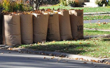 yard waste preparation